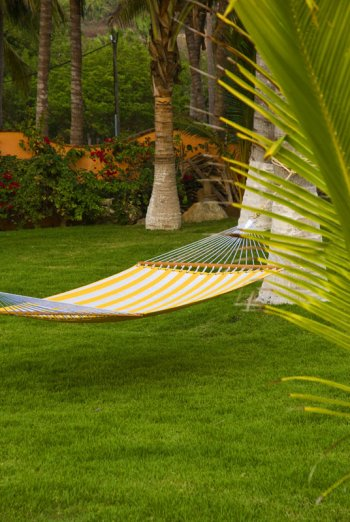 Hammock in the Front Yard at at Quinta Christileen, a luxury vacation rental in Punta Mita, Mexico