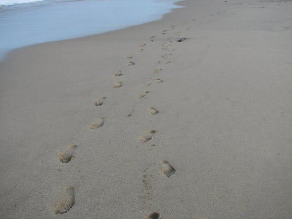 Litibu Beach Footprints in Punta Mita, Mexico