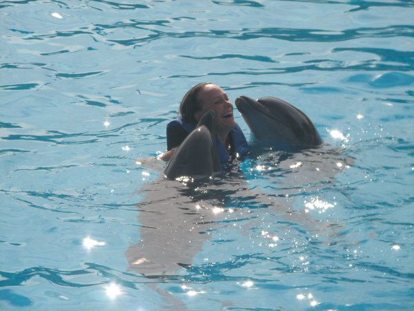 Swim with the Dolphins in Puerto Vallarta